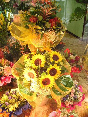angolo fiori